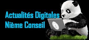 actualité web rabat Nième Conseil QCM marketing